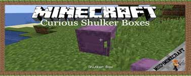 Curious Shulker Boxes Mod 1.16.3/1.15.2/1.14.4