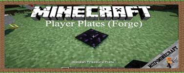 Player Plates (Forge) Mod 1.16.4/1.15.2/1.12.2